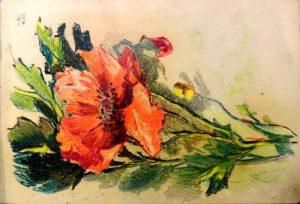 Цветы мака. 1909. Лист из походного альбома Я.Я. Зальцмана. Пастель.
