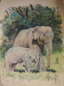 Слоны. 1915. Бум., акварель.