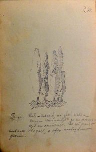 Кипарисы. 1905. Лист из походного альбома Я.Я. Зальцмана. Графитный карандаш.